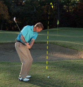 Keep a quiet lower body with limited hip rotation in the back swing.